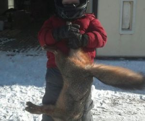 boy-holding-coyote