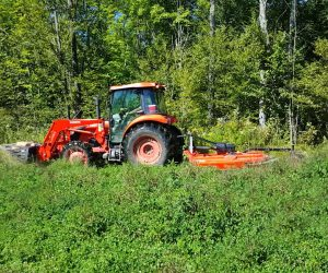 tractor-mowing-food-plot