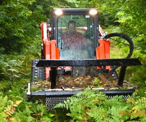 mowing-down-brush-with-skid-steer